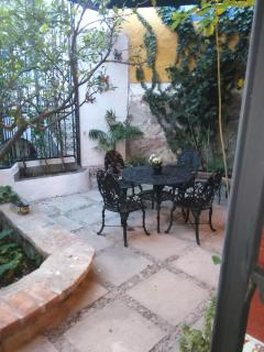View of patio garden and lime tree from living room
