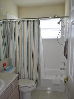 Master bathroom #2