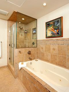 master bath stall shower and whirlpool tub