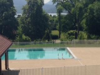 Vue sur lac et montagne avec piscine-haut standing, Annecy-le-Vieux