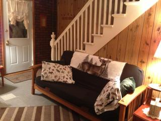 Old Forge Four Seasons Rental Home