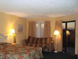 Studio LakeView Condo Orlando FL The Enclave Hotel