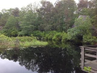 Serene view from across pond looking onto condos.  Our back deck faces pond.