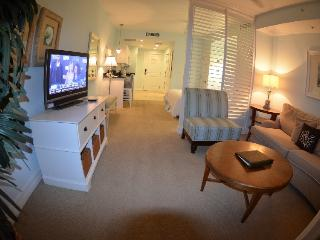 4 Star Resort, Luxury Studio Suite,Private Beach, Apollo Beach
