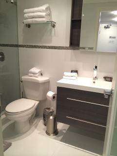 New Bathroom- Vanity and Shower