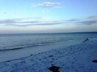 Your Tropical Island Vacation Destination, Captiva Island