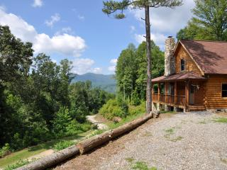 Custom 3BR Cabin on 200 Acre Conservancy!, Clyde