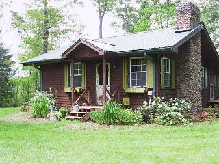 Adorable Old Bear Lodge on Acreage/Chestatee River/Only 10 Minutes to Dahlonega