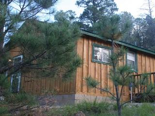 Mountain-Side Cabin, Close to Town and Skiing, Ruidoso