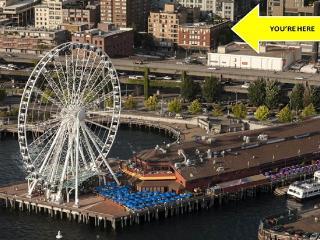 Stay Alfred Pike, 100 Walk Score, Rooftop Deck MS1, Seattle