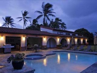 Oasis Villa -  outdoor kitchen, pool and jacuzzi, Kailua