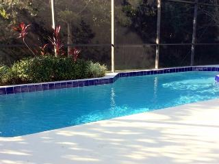 Funshine Magical Villa with Gameroom and WiFi, Kissimmee