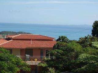 Hidden Paradise, True Puerto Rican Experience, Ceiba