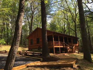 Spectacular 1 Bedroom Cabin Nestled in the Pines w/ Hot Tub near Luray, VA.