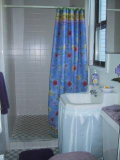 bathroom two with large shower