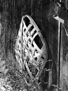 An old tobacco basket still hangs on the smokehouse wall