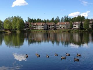 Reflection Lake Rental  (with lake/Mountain Views), Anchorage