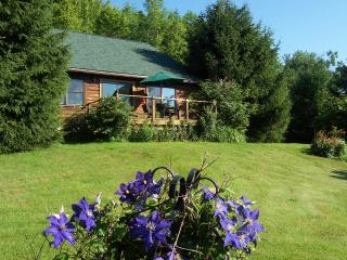 Andes Cabin Retreat-Spectacular Views of mountains Adjoining Pepacton Reservoir