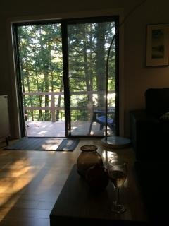 Gorgeous 2BR Lakefront Condo in Dartmouth/Sunapee