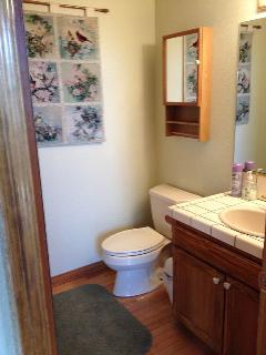 Guest Bathroom on first floor