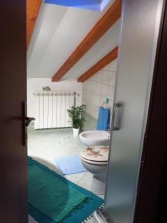 Toilet in attic