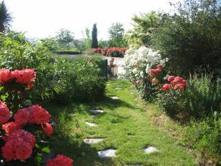Chemin d'accès à la piscine, au milieu des fleurs