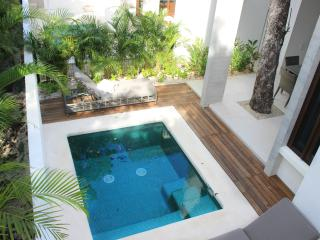 TH D4 Gorgeous House With Private Splash Pool, Akumal