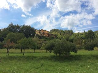 Casa Norma - Beautifully Restored Tuscan Farmhouse, Villa Collemandina