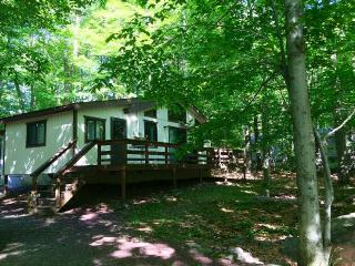 Amazing Lake House for the Whole Family !, Tobyhanna