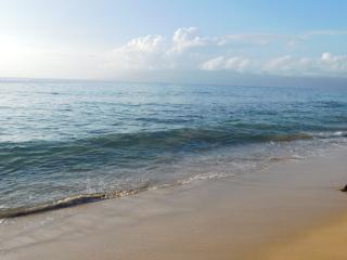 Wow! Great Location! Steps to Beach! Honua Kai