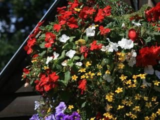 In the Summer, the barn in the courtyard is full of colour in the hanging baskets