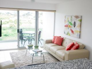 Luxurious 2 Bedroom Apartment, San José