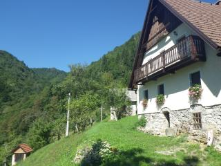 Farmhouse Apartment, Cerkno