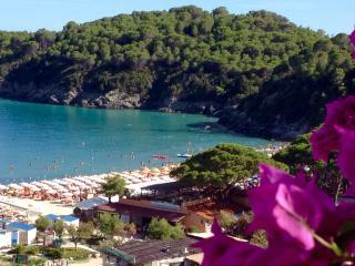 meravigliosa sulla baia di Fetovaia/stunning view