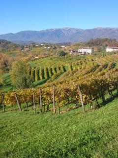 The land of Prosecco
