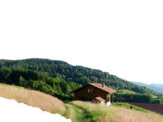 """Chalet """"Les Campanules"""" dans les Vosges  (9pers.), Fresse-sur-Moselle"""