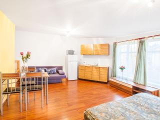 Maisonette Apartment in the City center of Prague