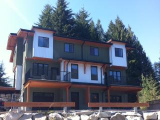 Nelson Morining Mountain Vacation Rental