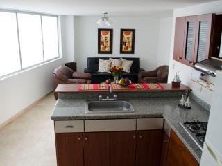 Apartamento amoblado de 1 a 3 personas, Pereira