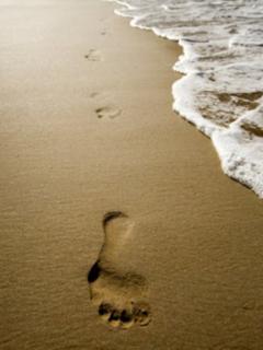 Own the beach each morning at Cinnamon Beach