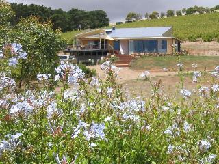 The Blue Grape Vineyard Accommodation -Yellow Room