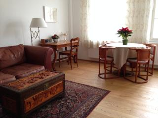 (3) Old town apartment, great views, Salzbourg