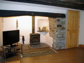 Living room, with wood stove and television