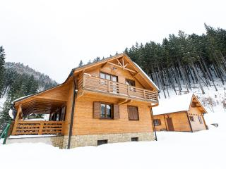 Beautiful Chalet Bear WILI HUNTER, Donovaly