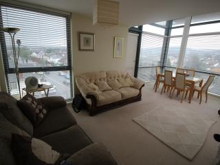 Large Penthouse 10 minutes from Cardiff Town