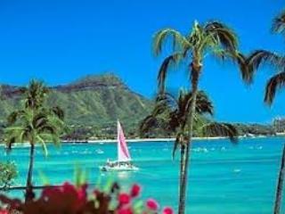 Hawaiian Style Studio