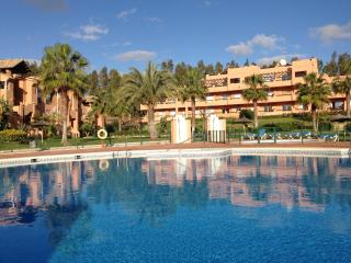 Poolside Casares Apartment:Large Terrace:A/C:WiFi