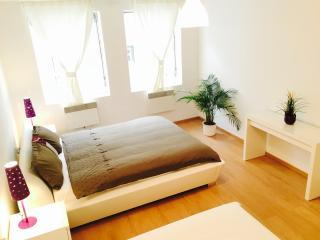 Bright, Airy Apt 8, 15 min to Wenceslas Square, Praga