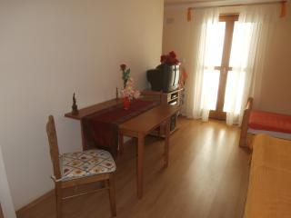 Apartment 2252, Nedescina
