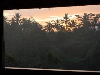 Sunrise from your bed